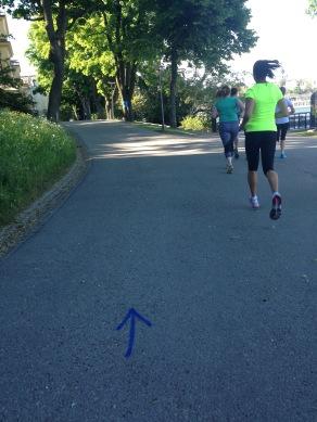 … zum Teil entlang der Strecke des Marathons……