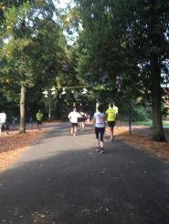 Schöne Laufstrecke auf der Münsteraner Promenade auf der ersten Etappe
