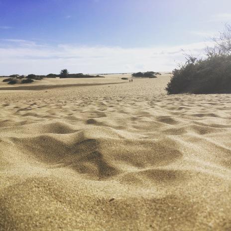 Wanderung durch die gigantischen Dünen von Maspalomas