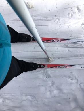IMG_9598 Skier